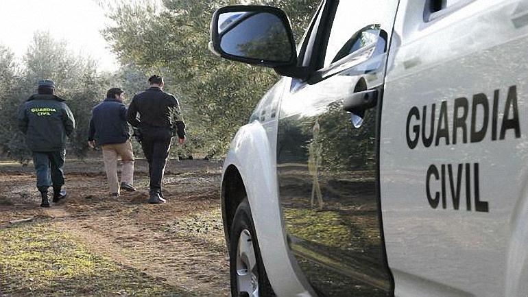 tres-detenidos-por-robos-en-explotaciones-agricolas-y-ganaderas-en-bolanos-y-daimiel