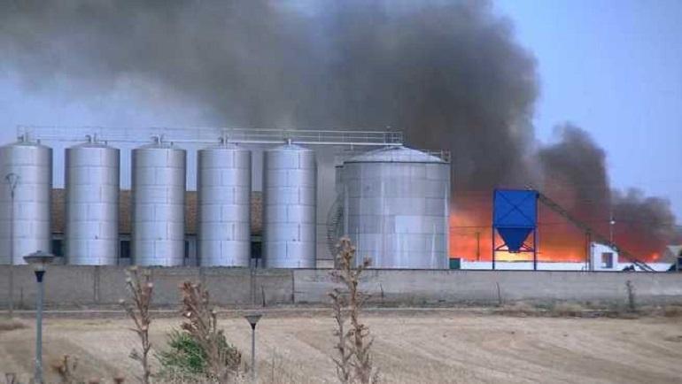 Pozuelo de Calatrava Sofocado un pequeño incendio de pastos en las afueras de la localidad