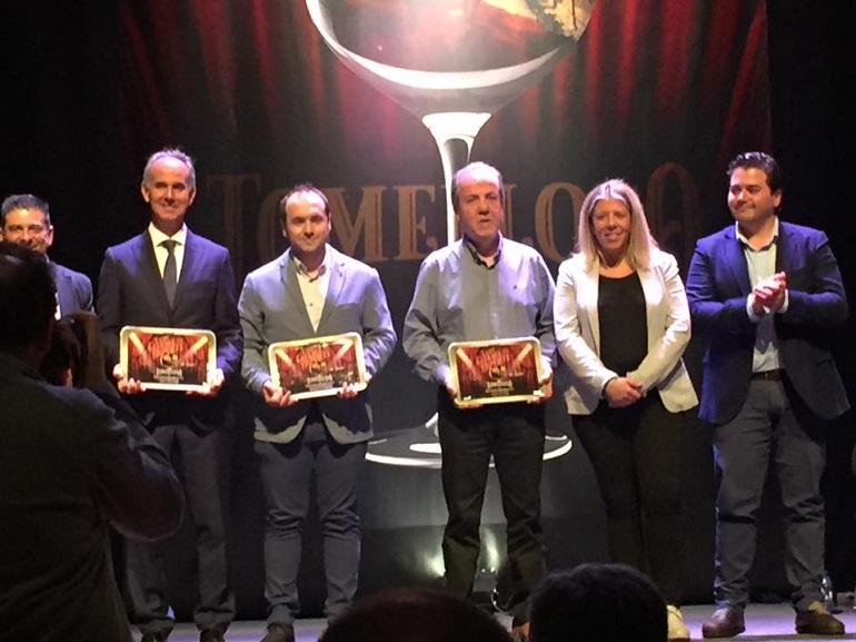El BM Pozuelo distinguido en la Gala del Deporte de la Diputación Provincial de Ciudad Real