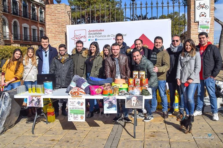 Juventudes Socialistas de Pozuelo de Calatrava recauda más de 500 kilos de comida en su recogida solidaria en ayuda de los animales