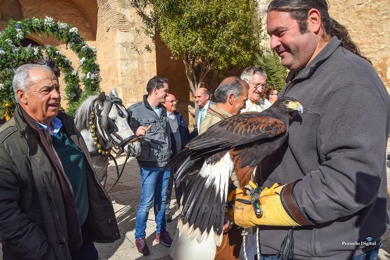 Pozuelo de Calatrava culminó la festividad de San Antón con la bendición de los animales